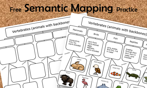 Teach semantic mapping with these free printables.