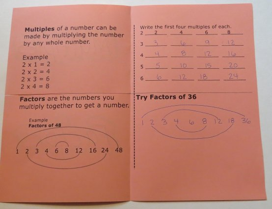 What are multiples and factors? Organizer