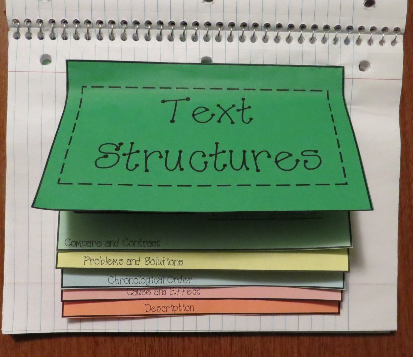 Text Structures Foldable Organizer