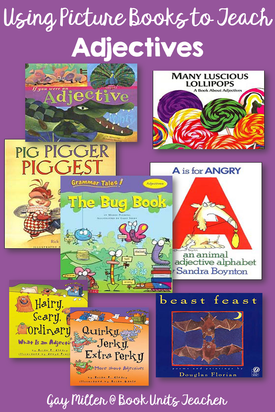 Adjectives - Picture Books that Help Teach Parts of Speech