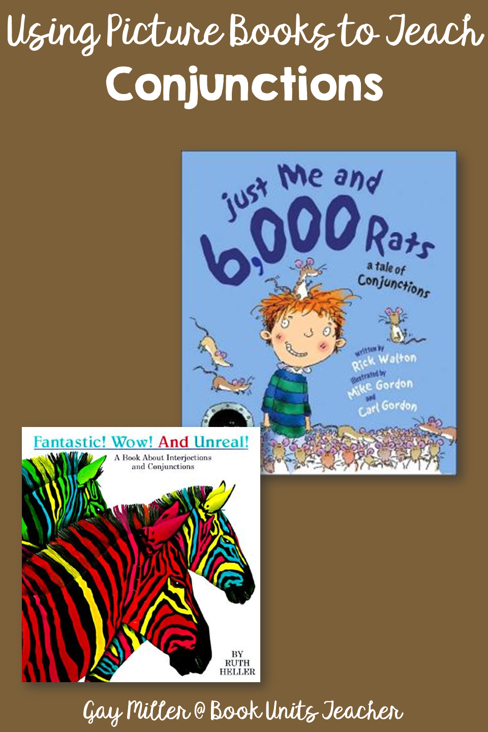 Conjunctions - Picture Books that Help Teach Parts of Speech