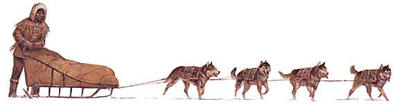 Inuit Dog Sled