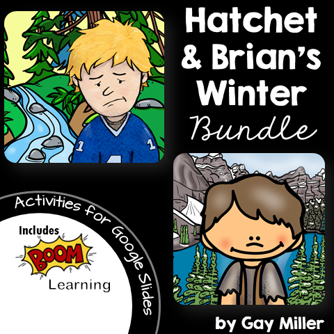Free Book Unit Samples for Brian's Winter by Gary Paulsen