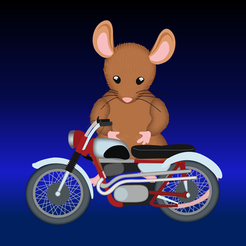 Teaching Ideas to use with the novel The Mouse and the Motorcycle