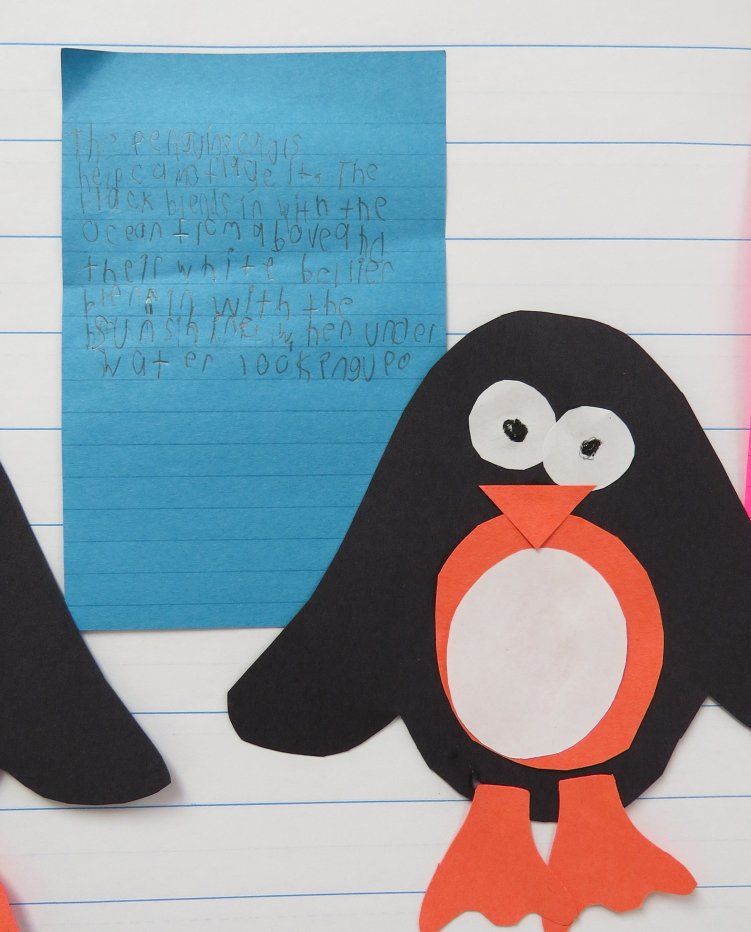 Penguin Anchor Chart