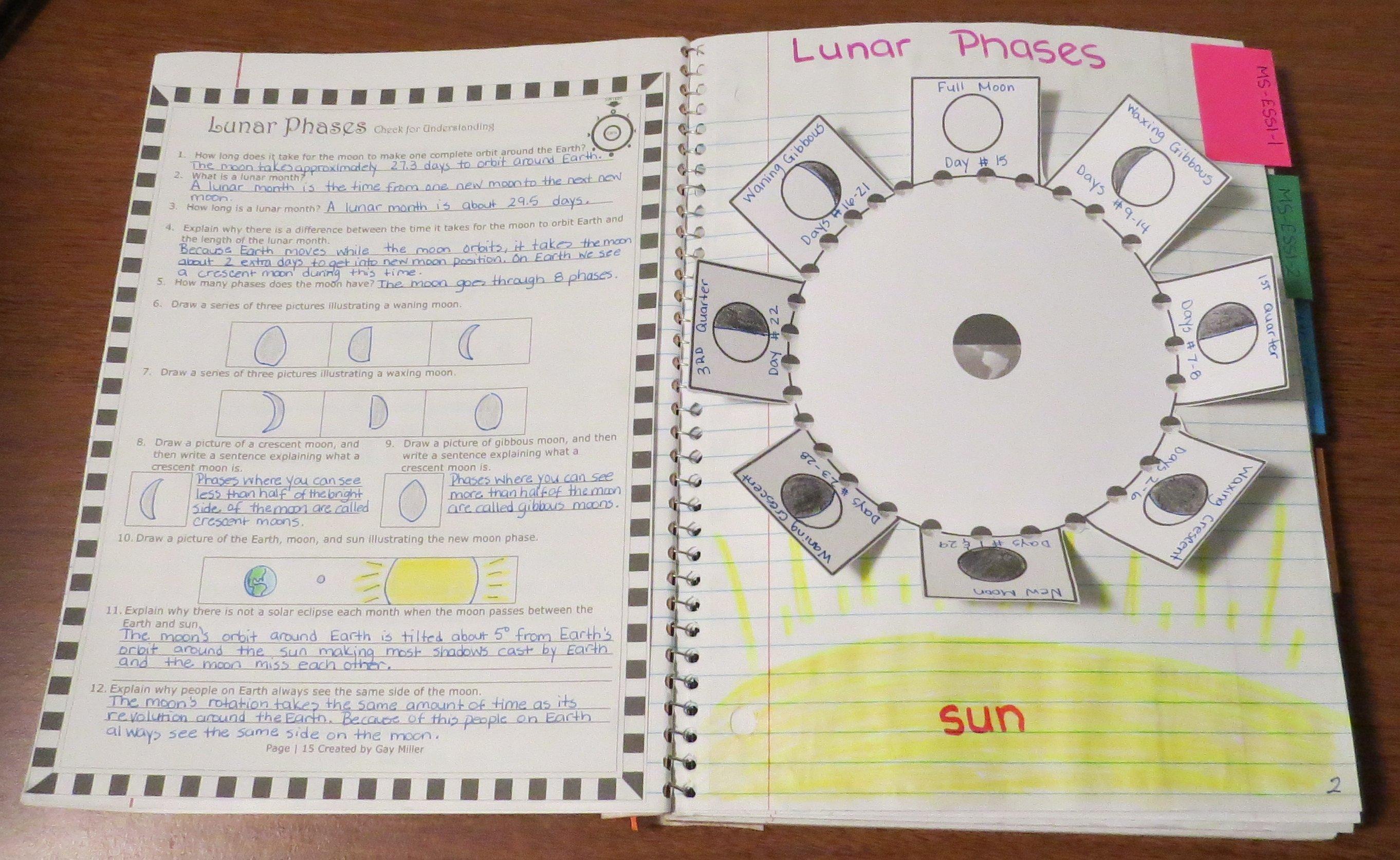 Free Lunar Phases Interactive Organizer