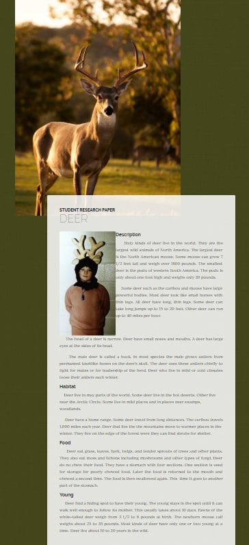 Animal Reports - Student Projects