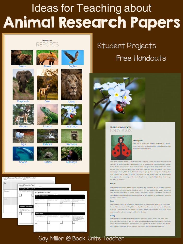 Teaching Elementary Students How to Write a Research Paper using an Animal Theme