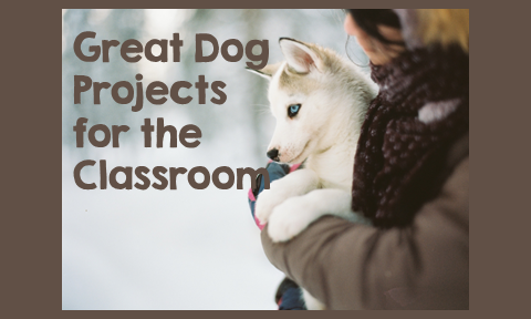 Great Dog Projects for the Classroom